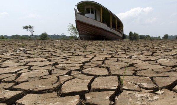 Antropoceno insostenible (artículo de Pepe Larios en contrainformación.es)