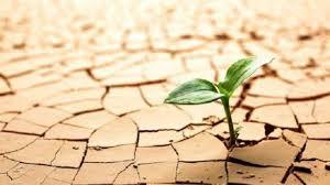 Resiliencia ante el shock: es el momento de cambiar de paradigma