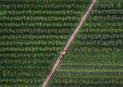 Próximo ciclo: Hacia un sistema alimentario justo y sostenible.